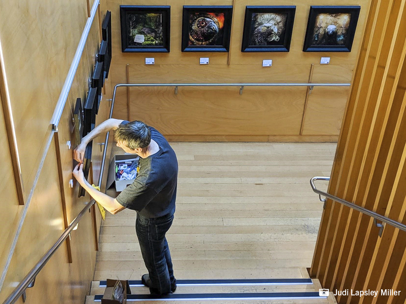 Volunteer Linton Miller makes final adjustments to how the artworks are hanging